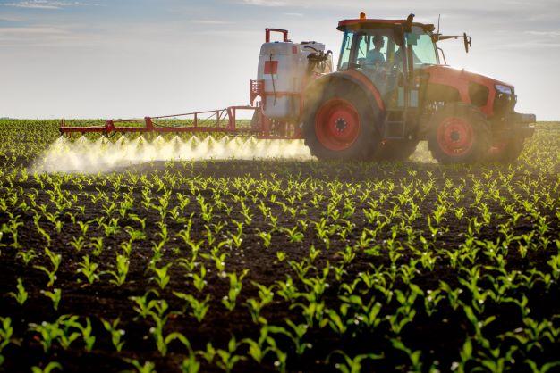 Kukurūzų purškimas