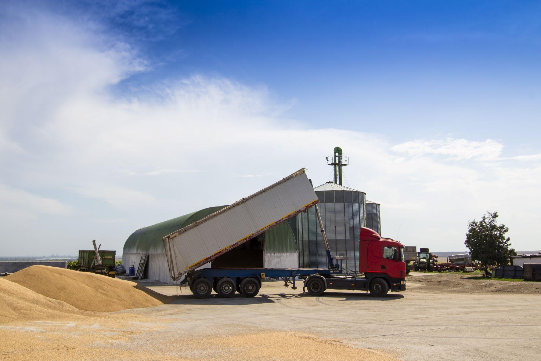 Sukvežimis iškrauna grūdus